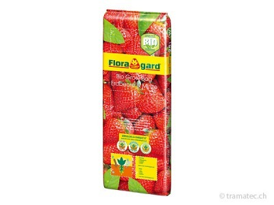 Floragard Bio Grow Bag Erdbeere & Minze