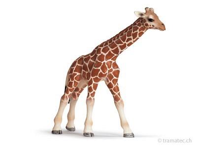 Schleich Giraffenbaby