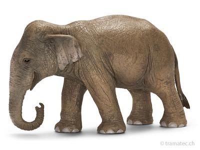 Schleich Asiatische Elefantenkuh