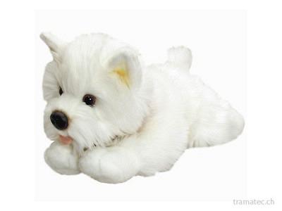 Keel Westie Hund liegend 30cm