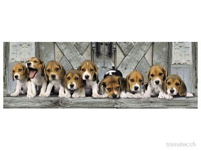 Clementoni Puzzle Hunde 1000 tlg.