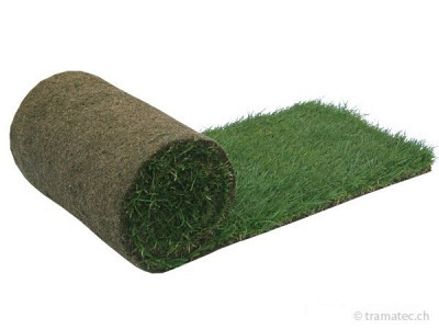 Rollrasen Rullturf Royal Substrat